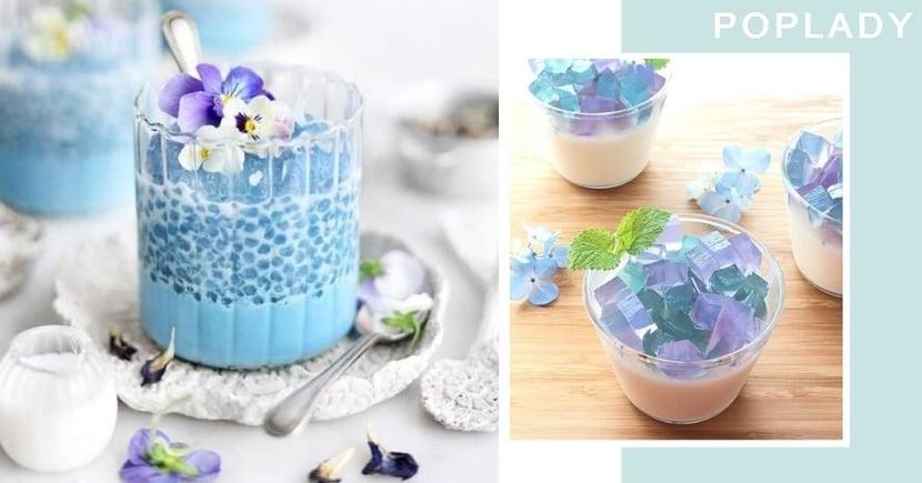 【蝶豆花功效+食譜】自製打卡消暑甜品!海洋果凍美顏又增強免疫力
