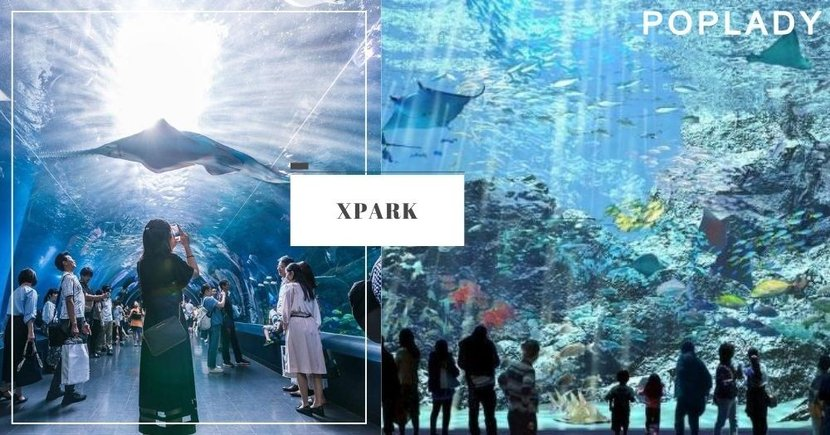 打卡必去!台灣全新Xpark水族館門票已公開預售!待疫情結束後立即去!