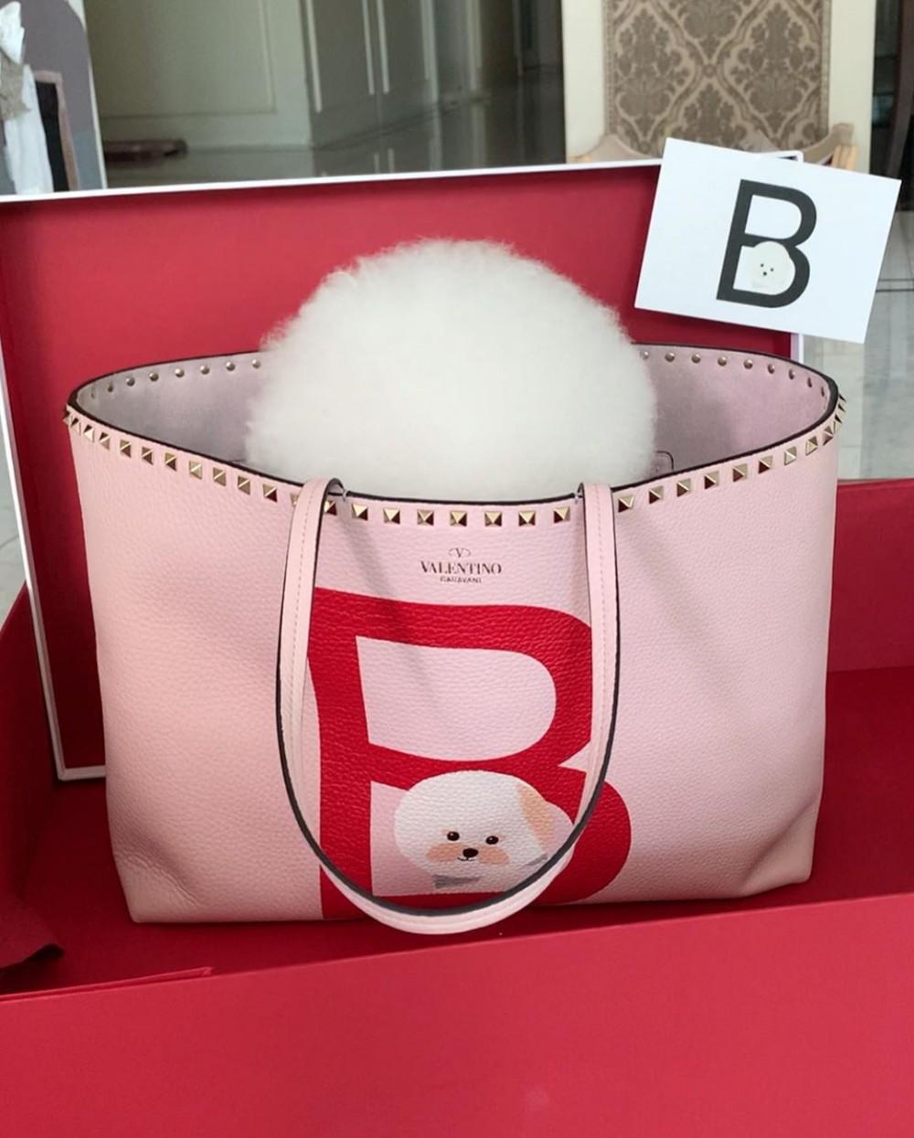 Valentino Garavani Rockstud Pet線上企劃 獨家訂製專屬愛犬袋002