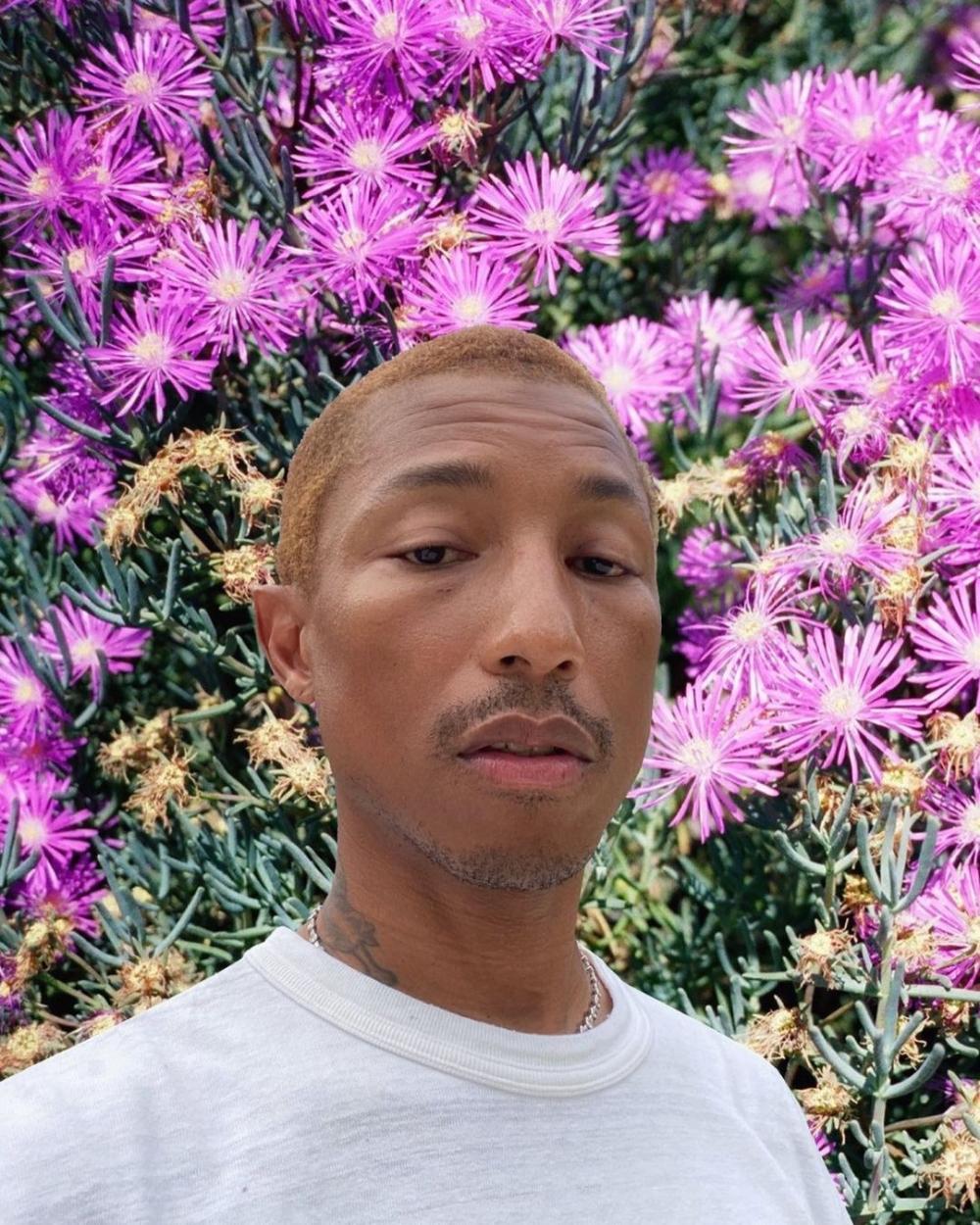 Instagram @pharrell