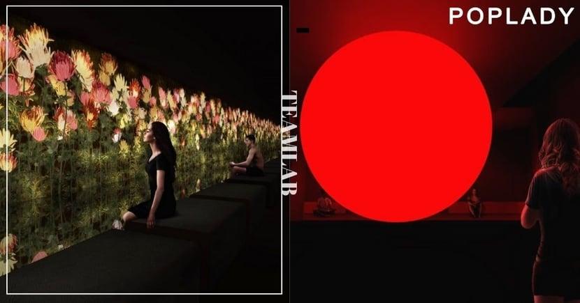 東京teamLab Reconnect:帶你身心走進「冷熱」合一 感悟「花開花落」的生命循環