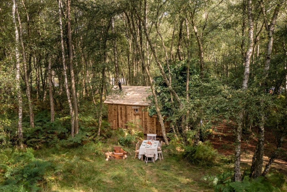 小熊維尼的餐桌,在自然中吃飯真的是人生一大享受