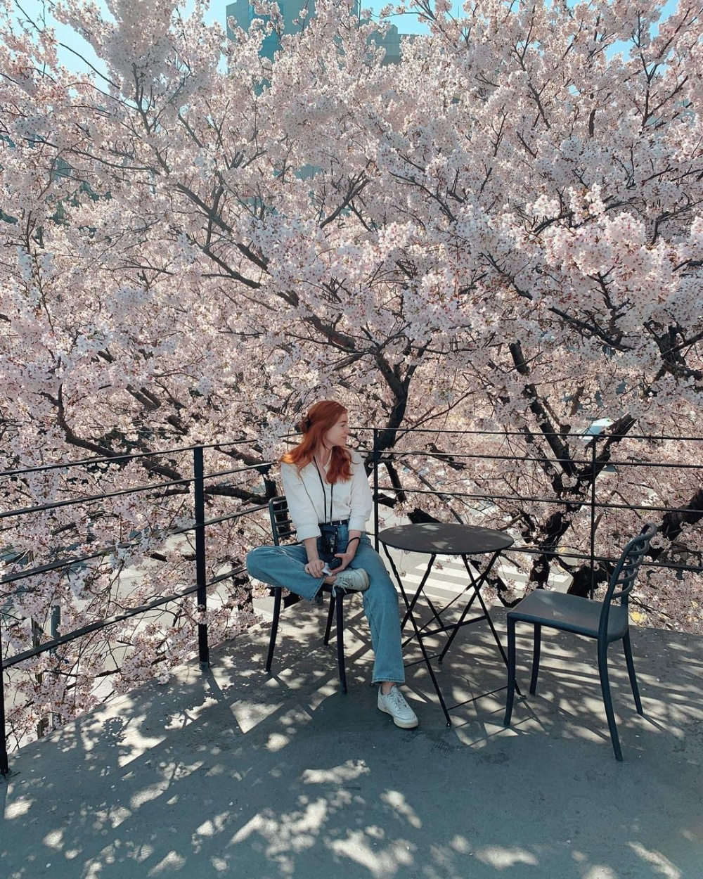 喜愛韓國而來到此讀書,現在也成為了韓國人