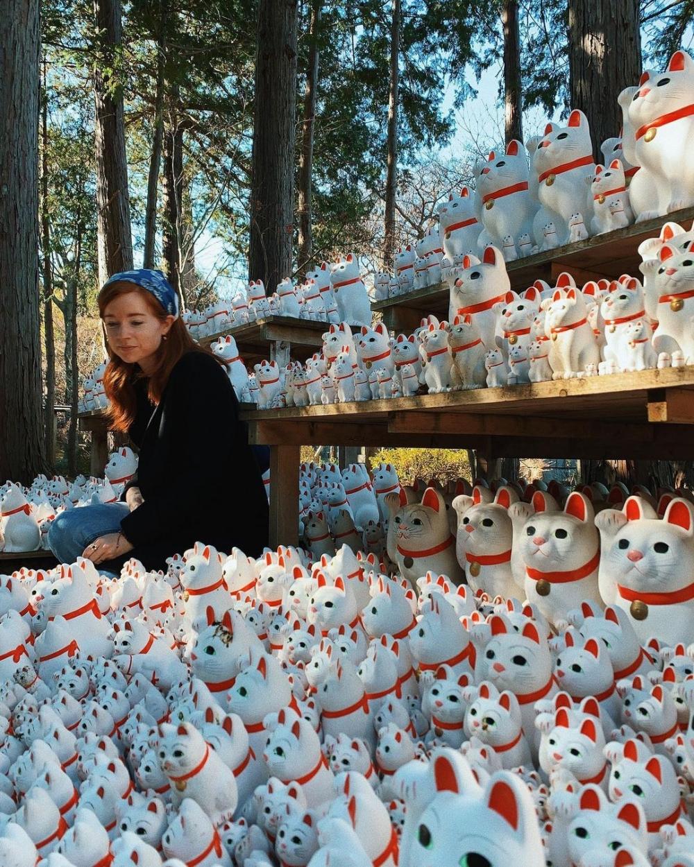 從美國到韓國,她異鄉找到了自己的家